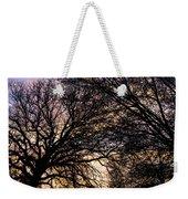 Dappled Sunset-1550 Weekender Tote Bag