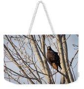 Dark-morph Western Red-tailed Hawks Weekender Tote Bag