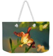 Dark Red Day Lily With Sun Shining Through I Abstract I Weekender Tote Bag