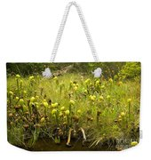 Darlingtonia Plants Grow Beside Weekender Tote Bag
