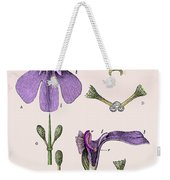Darwins Orchis Pyramidalis, Illustration Weekender Tote Bag
