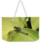 Dasher In My Pond Weekender Tote Bag