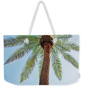 Date Palm In The City Weekender Tote Bag