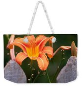 Day Lilly Fenced In Weekender Tote Bag