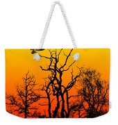 Day Of The Eagle Weekender Tote Bag