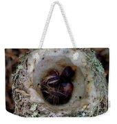 161549 Day Old Hummingbird Babies Weekender Tote Bag