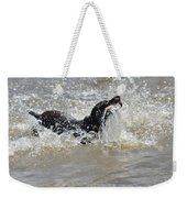Day On The River Weekender Tote Bag