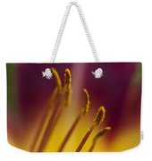 Daylily Abstract Weekender Tote Bag