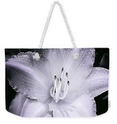 Daylily Flower With A Tint Of Purple Weekender Tote Bag
