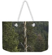Dead Pine Weekender Tote Bag