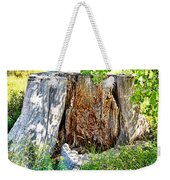 Deadwood On Cherry Creek Trail 3 Weekender Tote Bag