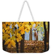 Dear In The Sunlight  Weekender Tote Bag