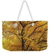 Deciduous Forest In The Autumn Weekender Tote Bag