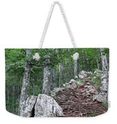 Deep Forest Rocky Path Nature Weekender Tote Bag