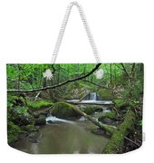 Deep Woods Stream 2 Weekender Tote Bag