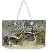 Deer 009 Weekender Tote Bag
