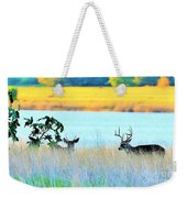 Deer At Sunset Weekender Tote Bag