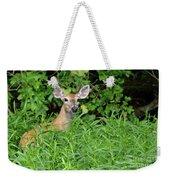 Deer Beauty II Weekender Tote Bag