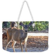 Deer Doe - 1 Weekender Tote Bag