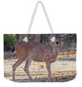 Deer Doe - 2 Weekender Tote Bag