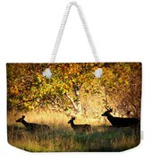Deer Family In Sycamore Park Weekender Tote Bag