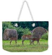 Deer In A Hay Field Weekender Tote Bag