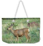 Deer In Boulder Colorado Weekender Tote Bag