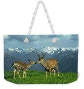 Ma-181-deer In Love  Weekender Tote Bag