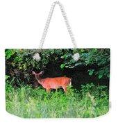Deer In Overhang Of Trees Weekender Tote Bag