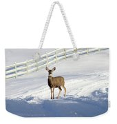 Deer In Snow Covered Road Weekender Tote Bag