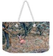 Deer In Woods Weekender Tote Bag