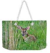 Deer Laying In Grass Weekender Tote Bag