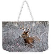 Deer On A Frosty Morning  Weekender Tote Bag
