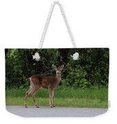 Deer On Road Weekender Tote Bag