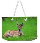 Deer Ruminating Weekender Tote Bag