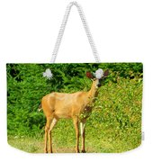 Deer To Me Weekender Tote Bag