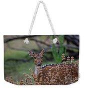 Deer V5 Weekender Tote Bag