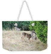 Deer24 Weekender Tote Bag