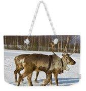 Deers Running On Snow Weekender Tote Bag
