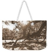 Defying Gravity In Sepia Weekender Tote Bag
