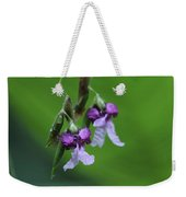 Delicate Blooms Of The Giant Alligator Flag Weekender Tote Bag