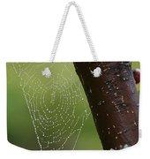 Delicate Spider Weave Weekender Tote Bag
