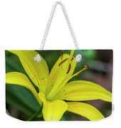 Delicate Yellow Oriental Lily Weekender Tote Bag
