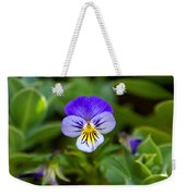 Delightful Colors Weekender Tote Bag