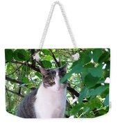 Demure Kitty Weekender Tote Bag
