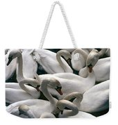 Denmark Swans Gathered On A Lake Weekender Tote Bag