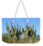 Desert Cacti In Cabo Pulmo Mexico Weekender Tote Bag