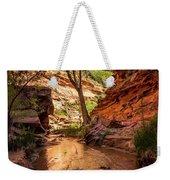 Desert Canyon Paradise - Coyote Gulch - Utah Weekender Tote Bag