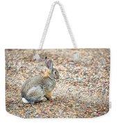 Desert Cottontail Weekender Tote Bag