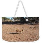 Desert Dog Weekender Tote Bag